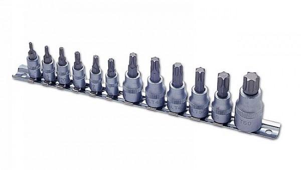 Torx-Nüsse T10 bis T60 - 12 teilig